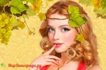 К чему снятся «виноградные сны»