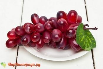 Виноград бордо