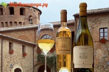 Вино Умбрия
