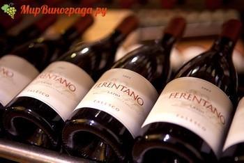 Вино лацио