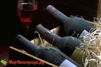Виноград Маркетт вино