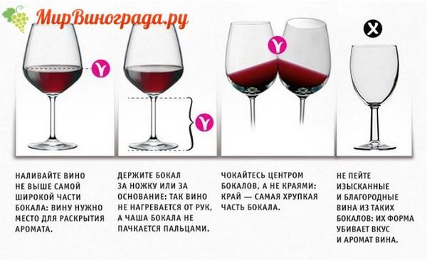 Бокалы для вина виды