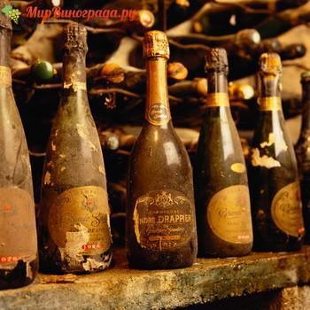 Виды Шампанских вин старых