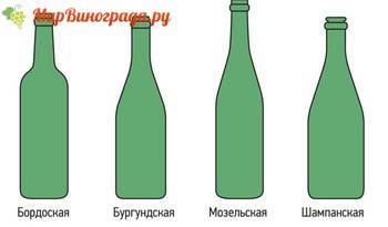 Виды бутылок для вина