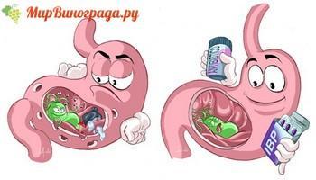 Что происходит в желудке при гастрите-1