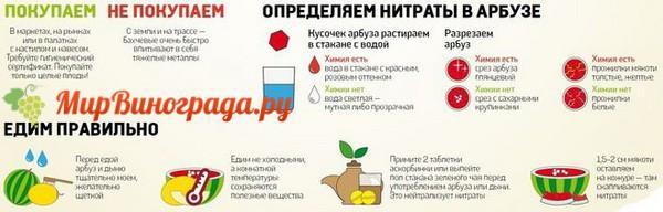 Как проверить арбуз на нитраты