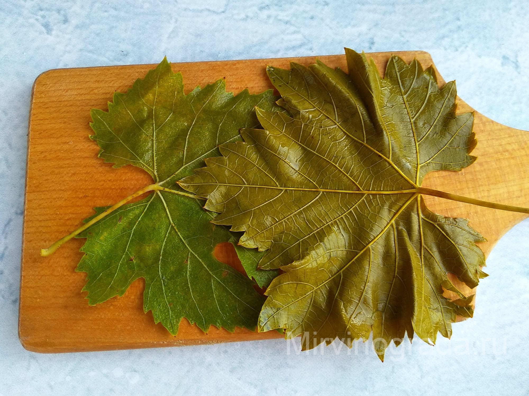Стопка виноградных листьев