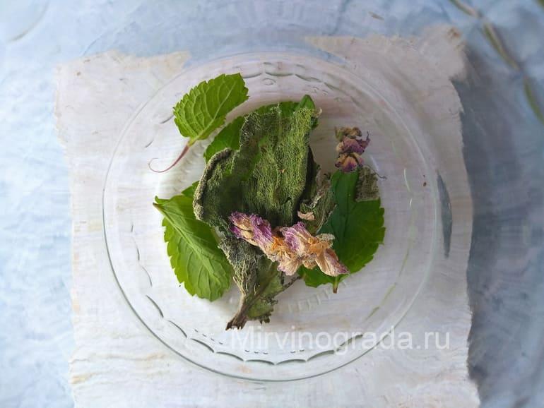 Листья шалфея и цветок для компота из винограда